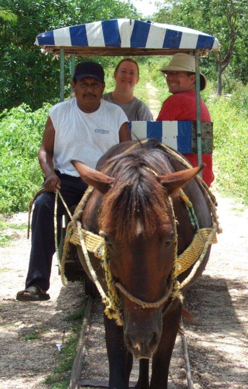 Cuzamá Horse Carts